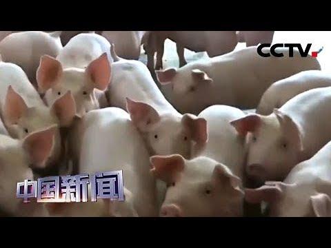 [中国新闻] 农业农村部: