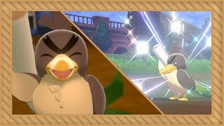 [LIVE] Shiny Galarian Farfetch'd after 1,529 encounters in Pokémon Sword [Full odds]