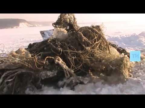 В Лаишевском районе Татарстана снят километр браконьерских сетей