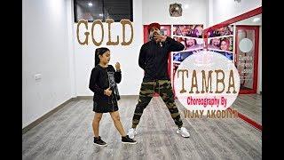Gold Tamba Video Song   Batti Gul Meter Chalu   Dance Choreography BY Vijay Akodiya