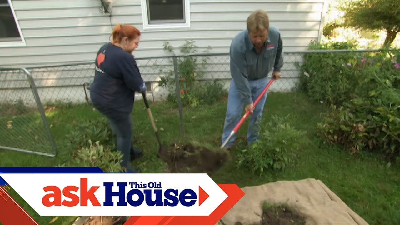 How to Transplant a Rose Bush | Ask This Old House Zone Plants Around House on full sun plants, plateau plants, zone 4 trees, evergreen rock garden plants, california plants, usda plants, united kingdom plants, zone 4 architecture, temperature zones for plants, zone 4 vines, garden mums plants, zone 4 landscaping, zone 4 flowers, zone 4 grasses, south dakota plants, san francisco plants, zone 4 gardening, roses plants, zone 4 roses, unknown plants,