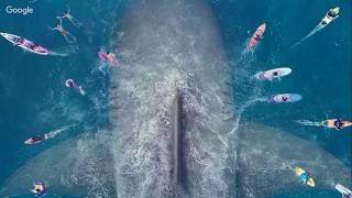 #NonsoloLive 62 - Shark - Il Primo Squalo - recensione (NO SPOILER)