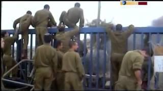 Die Radikale Zionisten - Zentrumsbewegung Teil 4