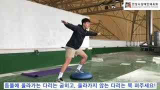 안성시장애인체육회 돔볼 운동영상 2편