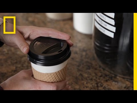 Care About the Ocean? Think Twice About Your Coffee Lid. | Short Film Showcase