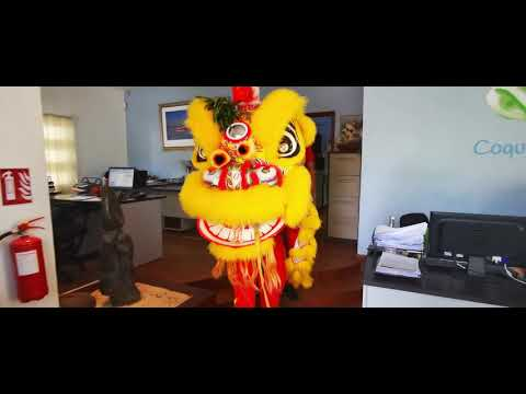 Chinese New Year at office - Coquille Bonheur Mauritius