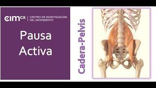 4. PAUSA ACTIVA: Cadera-Pelvis