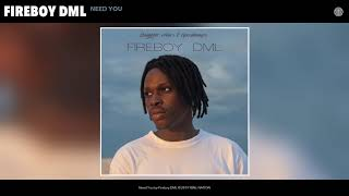 Fireboy DML - Need You (Audio)