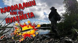 Карандаши Как Из Пулемета Рыбалка На Спиннинг Щука На Озере Летняя Рыбалка На Щуку