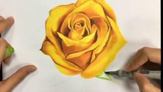 麥克筆技法教學15 黃玫瑰  / 日新設計學苑 (縮時版)