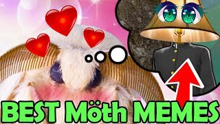 when SENPAI is LAMP! The Best of Moth & Spooktober Memes (Meme Officer - Try not to La ...