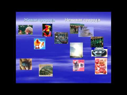 презентация живая и неживая природа 2 класс
