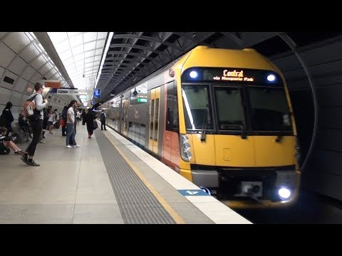 Trains at Epping - Sydney Trains