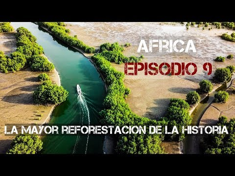 world´s-largest-reforestation-|-motorcycle-world-tour-|-africa-#9-[sub]