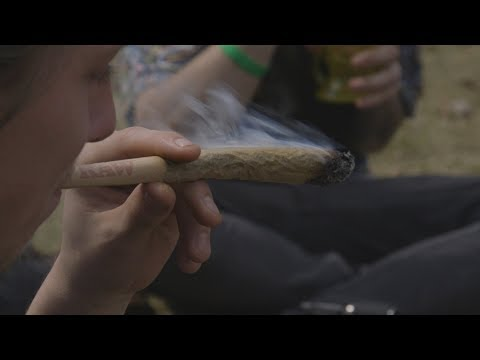 Matthew Abel Interviewed by MLive - Experience Hash Bash 2019