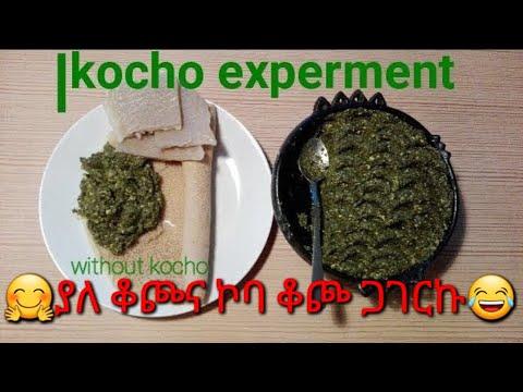 ያለ ቆጮ ቆጮን ለመፈልሰፍ የተደረገ ሙከራ ይሳካ ይሆን?/kocho experment