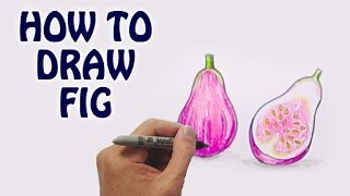 Learn How To Draw Fig in Easy Steps | Draw Fruits | Basic Drawing Lessons For Kids