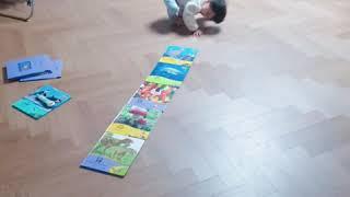 31개월프뢰벨자연관찰노래춤
