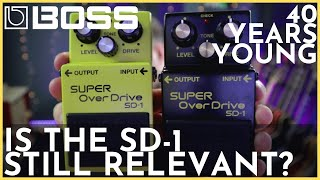 BOSS SD-1 4A 40TH ANNIVERSARY - Is the SD-1 Still a Great Pedal?