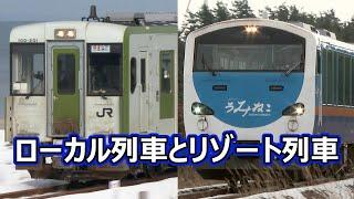 下北半島の大湊線を行く、ローカル列車とリゾート列車 キハ100,キハ48(リゾートうみねこ),HB-E300(リゾートあすなろ) DeiselRailcar&HybridDeiselRailcar