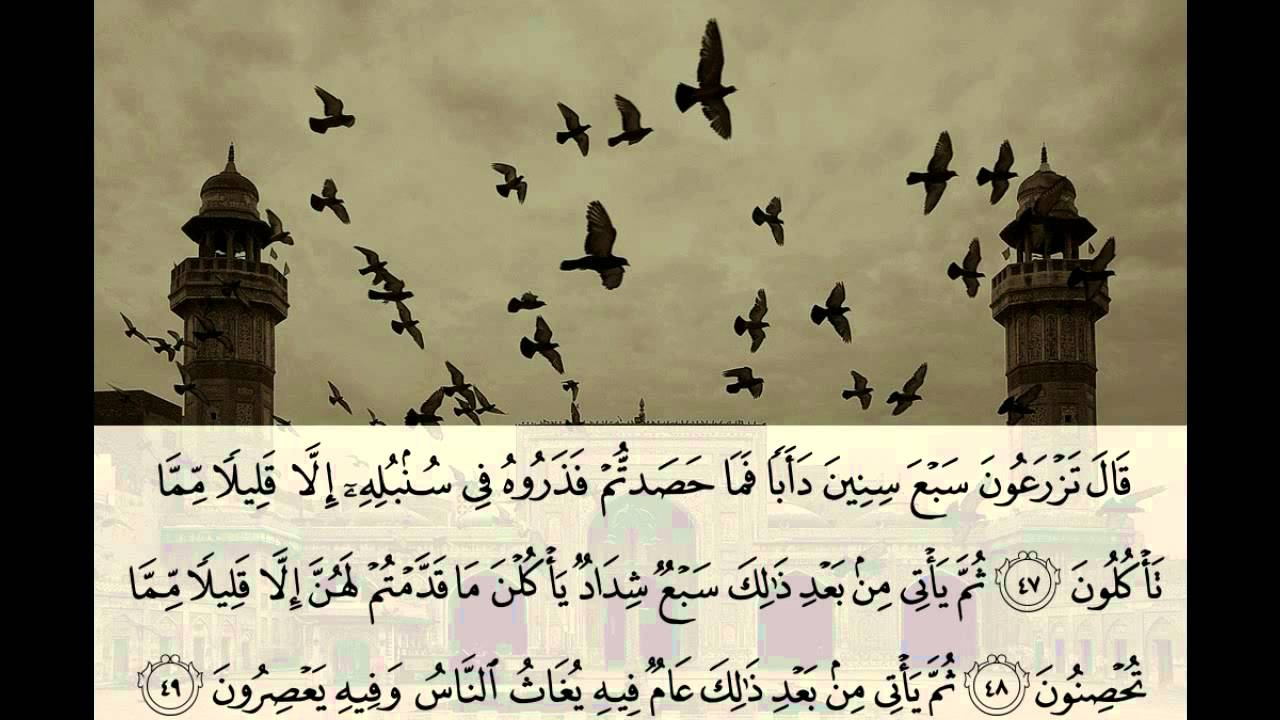 محمد البراك سورة يوسف كامله