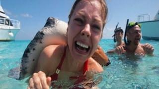 10 Самых Опасных Обитателей Океана