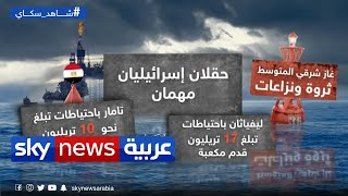 القاهرة تندد بعمليات مسح تركية قرب منطقتها الاقتصادية