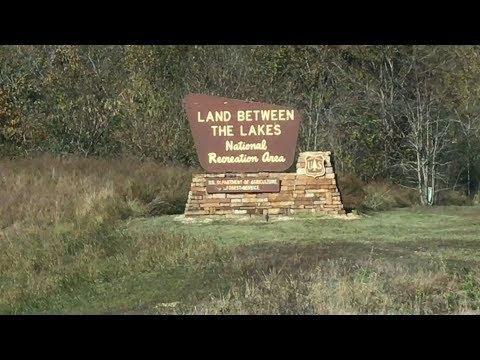 Deer Hunting Land Between The Lakes In Kentucky