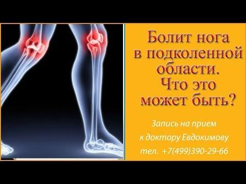 Болит нога до подколенной области. Причины, лечение. Ответ остеопата Александра Евдокимова