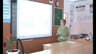Критериальное оценивание образовательных результатов в урочной деятельности (математика)
