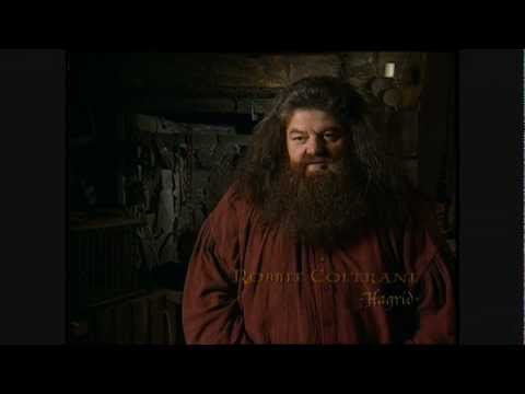 Harry Potter and the Chamber of Secrets - Robbie Coltrane short interview
