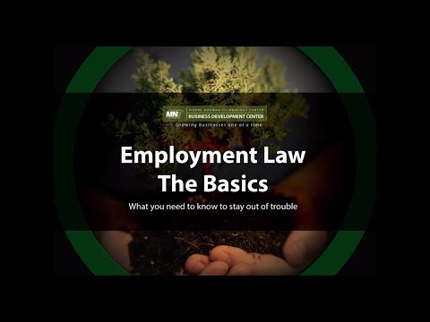 Employment Law The Basics