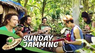 The Farmer -Sundays Best