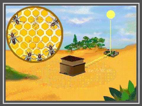 Danza de la abeja  YouTube