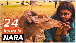 Exploring Nara Japan! Feeding deer and eating mochi