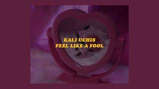 「Feel Like a Fool - Kali Uchis (lyrics)🍒」
