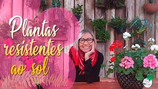 Conheçam as Plantas e flores Resistente ao Sol Forte