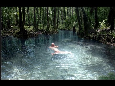 The Mermaid Stream
