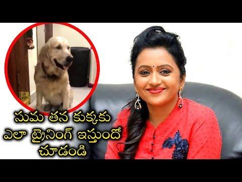 Suma Kanakala Funny Conversation With Her Pet Zorro | Tollywood News | Anchor Suma Funny Videos