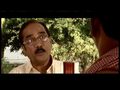 Trivikram Maize from TriMurti Seeds త్రివిక్రమ్ మొక్కజొన్న త్రిమూర్తి సీడ్స్