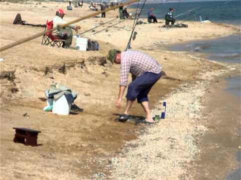 рыбалка на пеленгаса арабатская стрелка