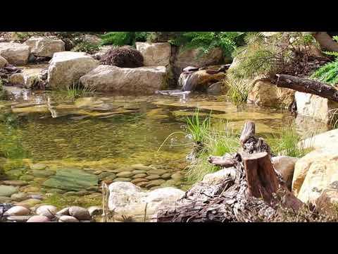 Mediterranean themed natural pond