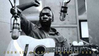 JOHN LEE HOOKER - Shake it Baby