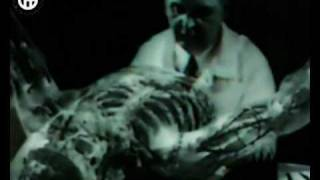 Gradual Hate & Kenji Siratori - Vampire Device