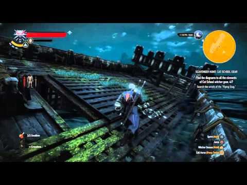 The Witcher 3: Wild Hunt_cat school gear - search the wreck of the flying stag