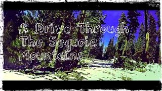 A Drive Through Sequoia Mountains
