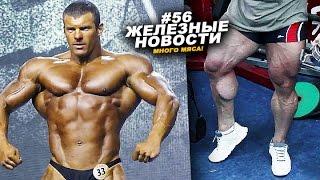 Кулаев может не выставить лучшую форму! #56 ЖЕЛЕЗНЫЕ НОВОСТИ