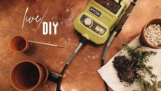 Let's Catch Up! | Live DIY + Tool Time