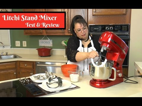 Litchi Stand Mixer Test & Review ~ Blender, Meat Grinder, and Pasta Extruder ~ Amy Learns to Cook
