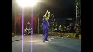 Выступление кошек в цирке